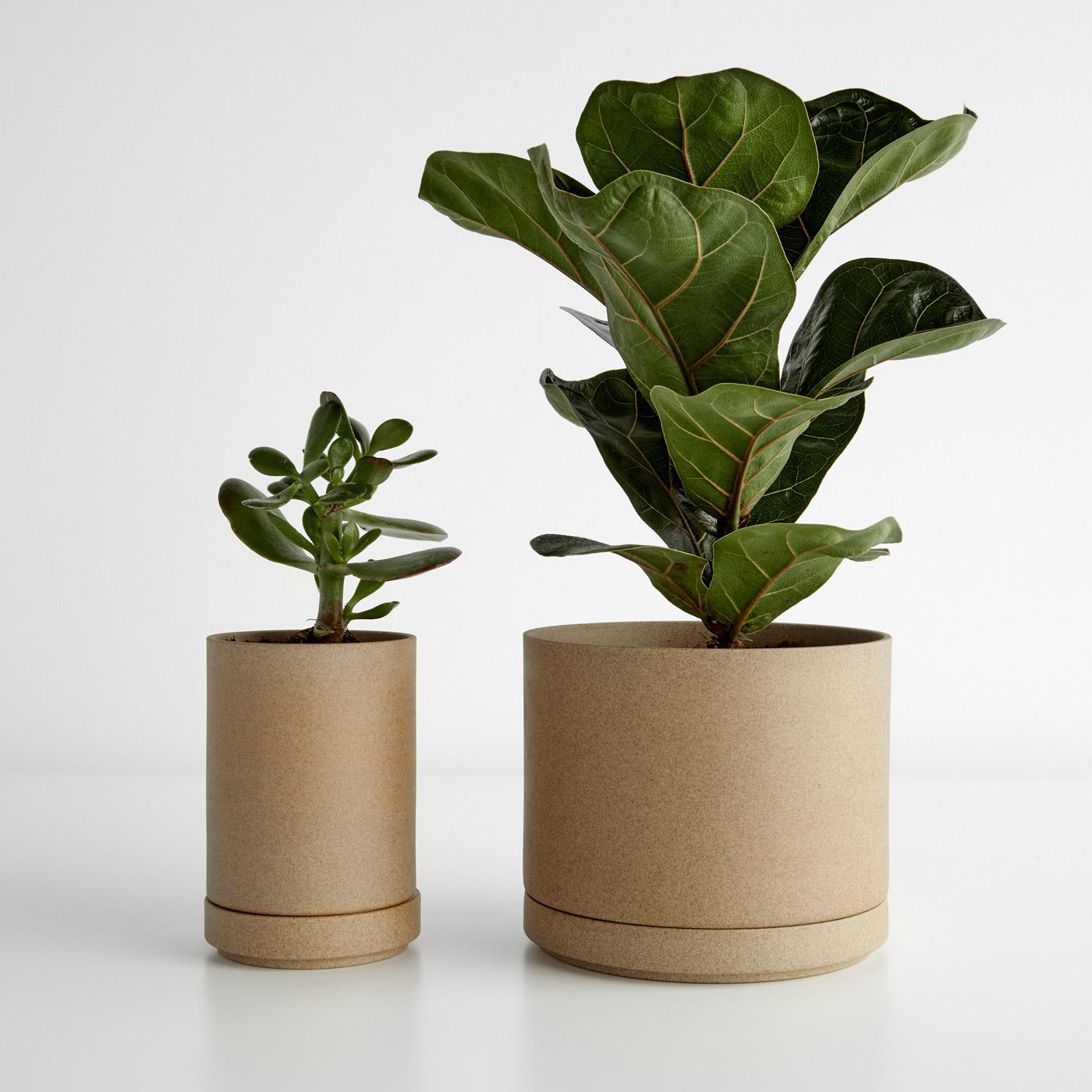 Hasami Natural Planters
