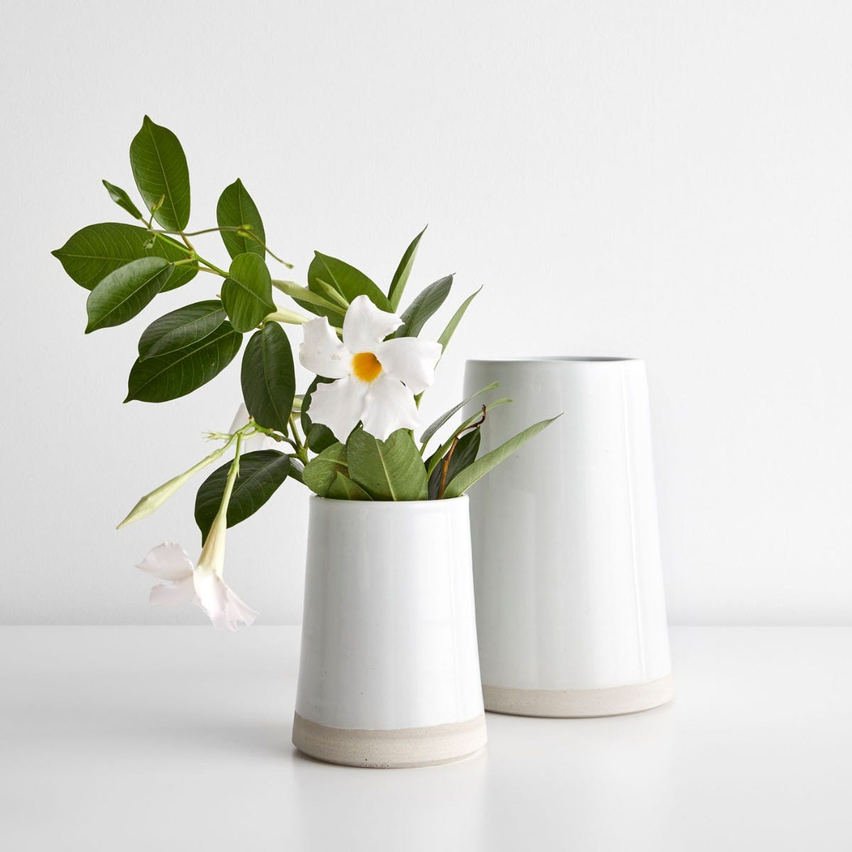 Thrown Gloss White Vases