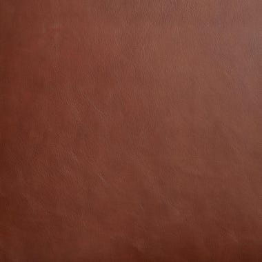 Sienna Leather Swatch