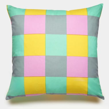 Buffalo_Mint_Throw_Pillow_22x22