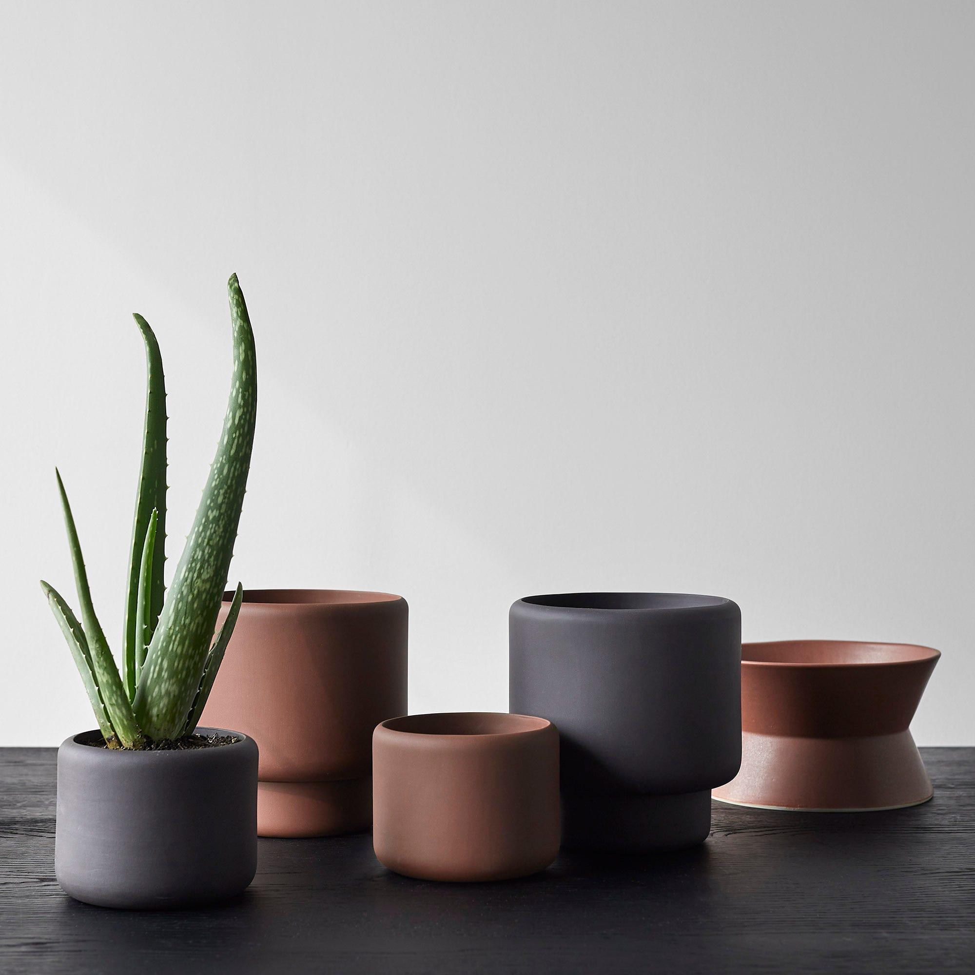 Vases + Planters